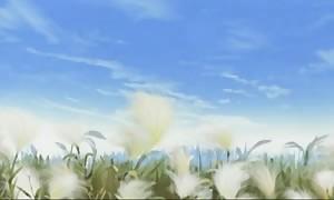 Samourai XXX 2